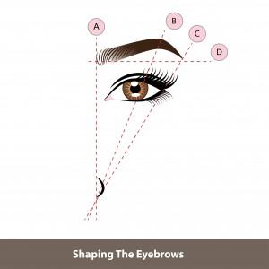 Eyebrow_ABCD